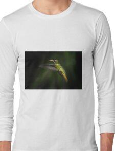 Hummingbird of Iguazu - No. 2 Long Sleeve T-Shirt