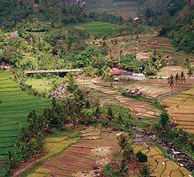 Bali-slice of heaven 2 by ecureuil