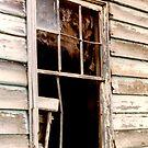 Broken Window by Mrswillow