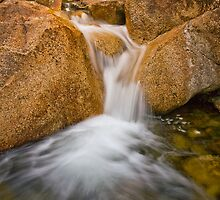 Eurobin Creek cascades by Neil