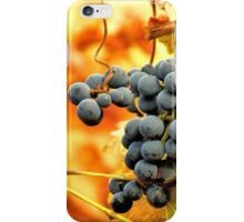 Grape Vines in Autumn iPhone Case/Skin