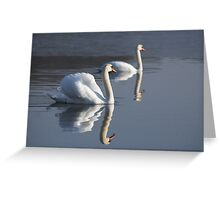 Swan Lake Greeting Card