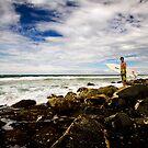 Rock Surfer by Ken Wright