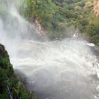Zambezi River Below Victoria Falls Zambia - Zimbabwe by Adrian Paul