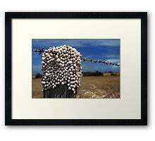 Who's on top? Framed Print