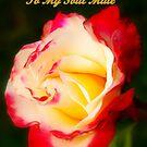 Soul mate by Rosemaree