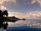 Infinity pool at the edge of the ocean. by Alex Preiss
