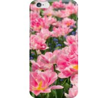Blue forget-me-nots with pink tulips iPhone Case/Skin