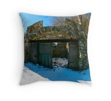 old and in the way Throw Pillow