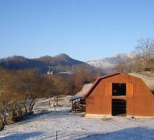 Donkey Barn in Winter by JRobinWhitley