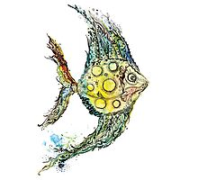 Watercolor fish illustration Photographic Print