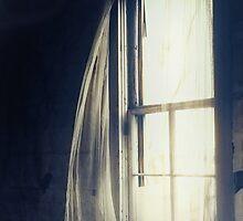 Dark Dreams by Trish Mistric