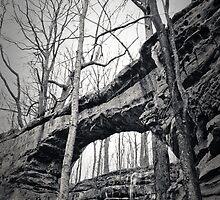 Natural Bridge by Linda Curty