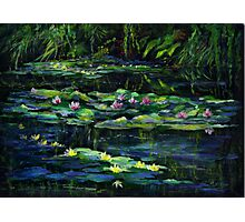 Monet's Garden at Giverny Photographic Print
