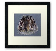 sneuvelnation - alien invasion from the ground Framed Print
