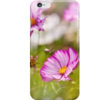 Cosmos Bipinnatus flowering iPhone Case/Skin