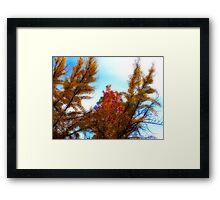 Fall to Earth Framed Print