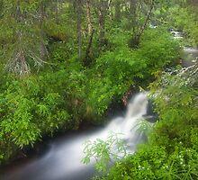 River Running by Juha M. Kinnunen