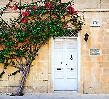 Mdina, Malta Door 2 by Alison Cornford-Matheson