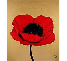 Remember Crimson Red Large Poppy Painting Photographic Print