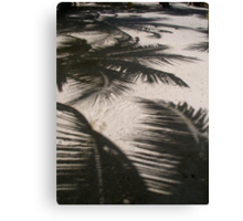 Shadows of Palm Trees on White Sand Beach Tropical Belize Island Canvas Print