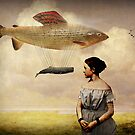 Whale watching by Catrin Welz-Stein
