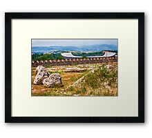 Stadium Landscape Framed Print