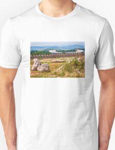 Stadium Landscape T-Shirt