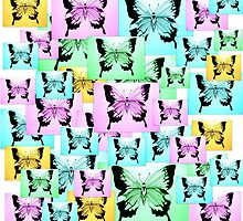 Carefree Butterflies by cathyjacobs