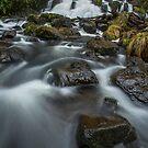 Chainsaw Falls by John Morton