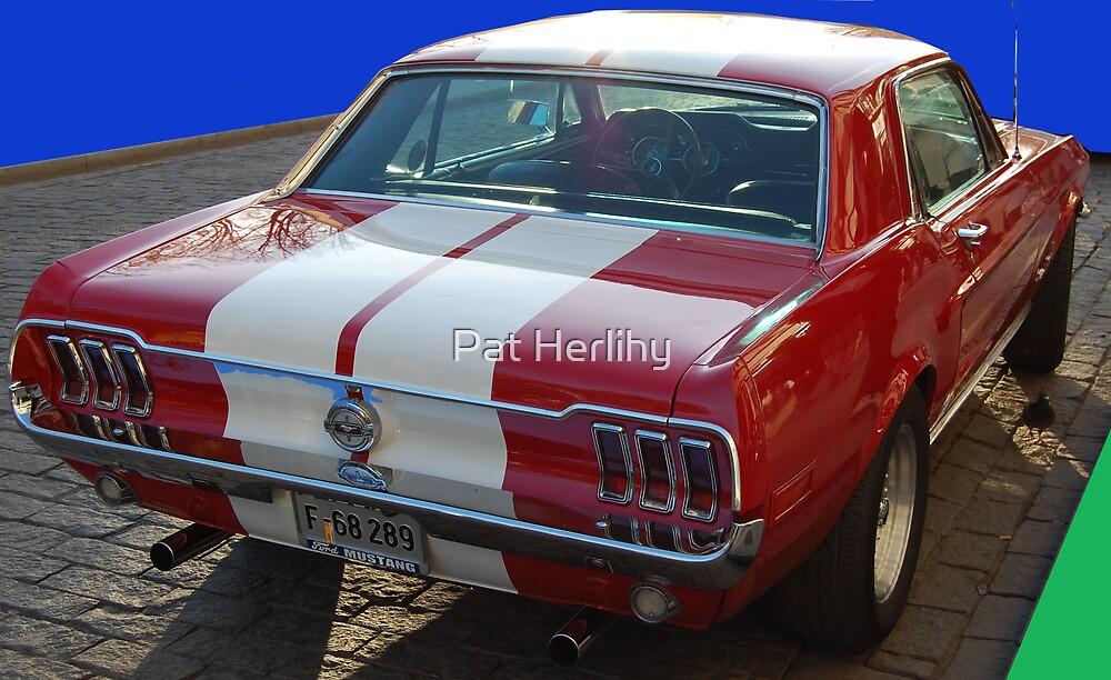 Mustang 2 by Pat Herlihy