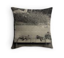 Langoor Learners 2 Throw Pillow