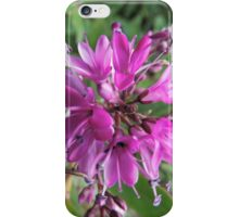 """Symmetry of Pink Flowers - Hebe """"Great Orme"""" iPhone Case/Skin"""