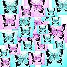 Butterfly Joy by cathyjacobs