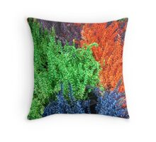 COLOURS IN A POT - SOLD Throw Pillow