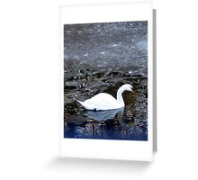 Beauty in Ice Greeting Card