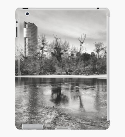 Icy Florido Tower iPad Case/Skin