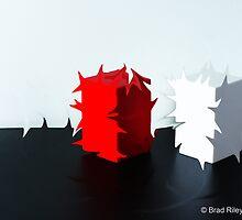 Cubist Duality by Brad Riley