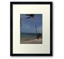 Later Gator... Framed Print