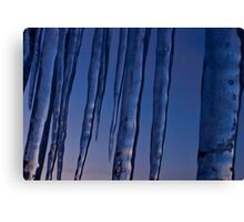 icicle sunset 7 Canvas Print