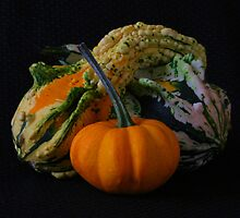 Fall Still Life by mklue