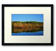 Fall In the Finger Lakes Framed Print
