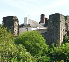 Monmouth Castle 3 by missmoneypenny