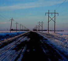 Manitoba Farm Road by Stephen Thomas