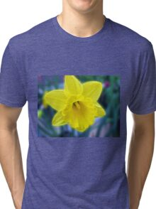 Vibrant Golden Daffodil Tri-blend T-Shirt