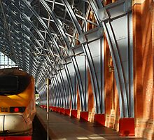 St Pancras Eurostar by Christopher Dunn