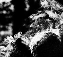 Smoke scroll  by Yevgeni Kacnelson