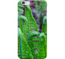 Earth Horses iPhone Case/Skin