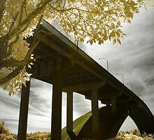 Gladesville Bridge in Framing by anwarsalim