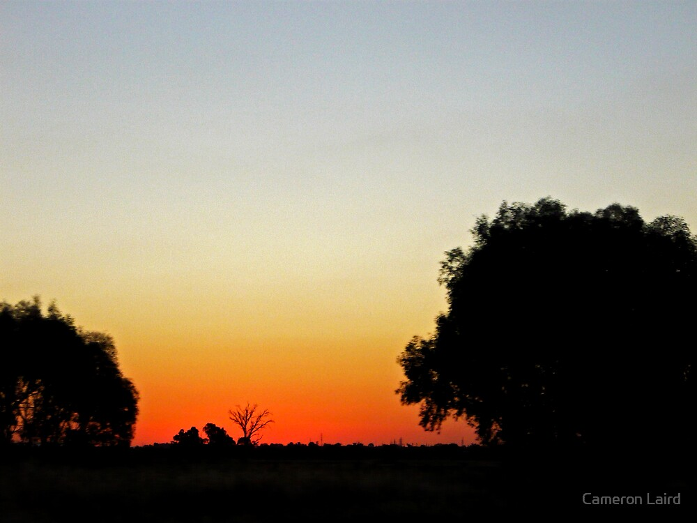 Lonely Tree Sunset by Cameron Laird